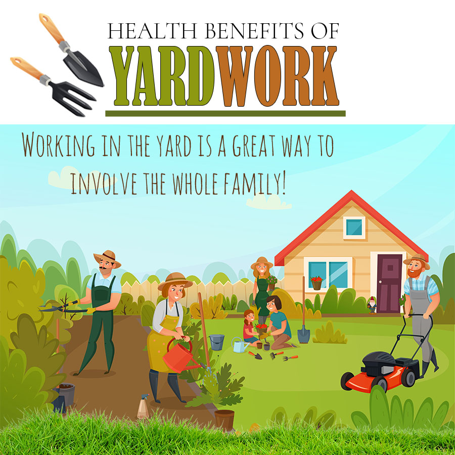 Lawn Care – Dethatching